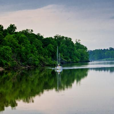 https://imgc.allpostersimages.com/img/posters/sailboat-sailing-down-the-tombigbee-river-in-mississippi-usa_u-L-PN6TG70.jpg?p=0