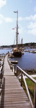 Sailboats at a Harbor, Camden, Knox County, Maine, USA