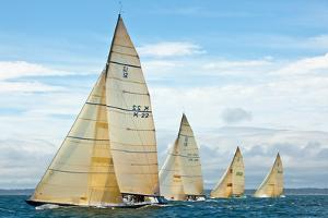 Sailboats Competing in the 12-Metre Class Championship, Newport, Rhode Island, USA