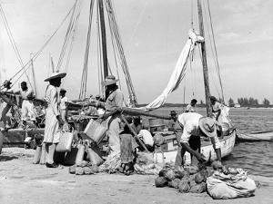 Sailboats Docked at Eleuthera, Bahamas, C.1955
