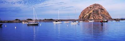 Sailboats in an ocean, Morro Bay, San Luis Obispo County, California, USA