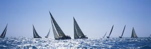 Sailboats Racing in the Sea, Farr 40's Race During Key West Race Week, Key West Florida, 2000
