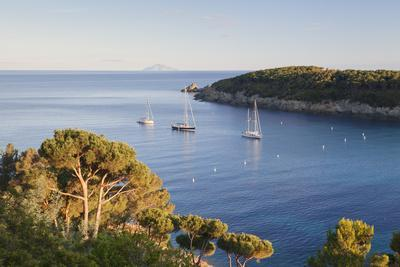 https://imgc.allpostersimages.com/img/posters/sailing-boats-in-the-bay-of-fetovaia-at-sunset-island-of-elba-livorno-province-tuscany-italy_u-L-PWFRHC0.jpg?p=0