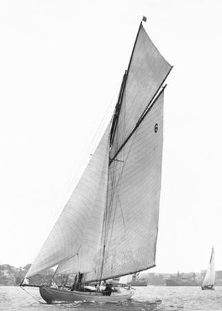 Sailing in Sydney Harbour