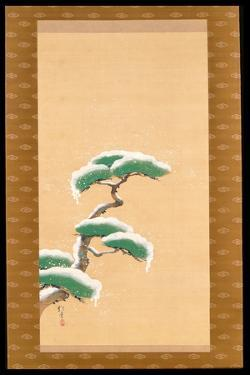 Hanging Scroll Depicting a Snow Clad Pine, from a Triptych of the Three Seasons, Japanese by Sakai Hoitsu