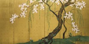 Maples and Cherry Trees by Sakai Hoitsu