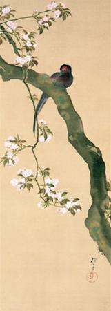 March by Sakai Hoitsu