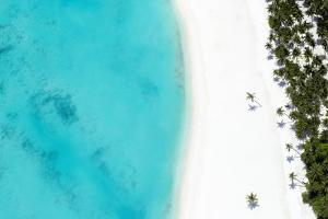 Aerial view of tropical beach and lagoon, The Maldives, Indian Ocean, Asia by Sakis Papadopoulos