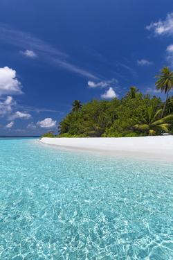 Beautiful sandy beach, lagoon and palm trees, The Maldives, Indian Ocean by Sakis Papadopoulos