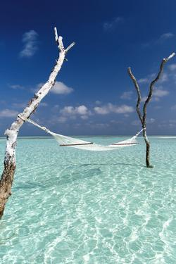Hammock over the waters of a tropical lagoon, The Maldives, Indian Ocean, Asia by Sakis Papadopoulos