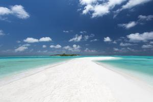 Sandbank and tropical island, Maldives, Indian Ocean, Asia by Sakis Papadopoulos