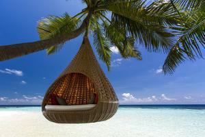 Sofa Hanging on a Tree on the Beach, Maldives, Indian Ocean by Sakis Papadopoulos