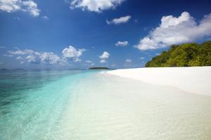 Tropical Beach, Baa Atoll, Maldives, Indian Ocean, Asia by Sakis Papadopoulos