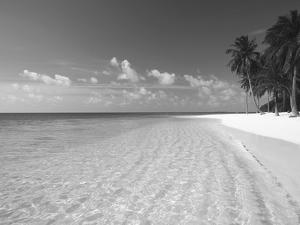 Tropical Island and Beach, Maldives, Indian Ocean, Asia by Sakis Papadopoulos