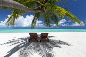 Two deck chairs under palm trees and tropical beach, The Maldives, Indian Ocean, Asia by Sakis Papadopoulos