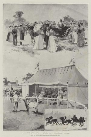 https://imgc.allpostersimages.com/img/posters/sale-of-the-sandringham-herd-and-flock-3-july_u-L-PVWG5A0.jpg?p=0