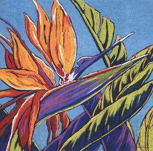 Birds of Paradise - Turquoise by Sally Evans