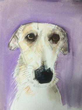 Lurcher by Sally Muir
