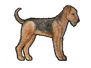 Airedale by Sally Pattrick