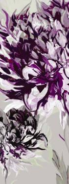 Purple Allure I by Sally Scaffardi