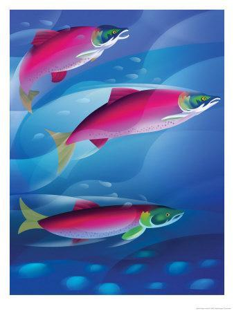 https://imgc.allpostersimages.com/img/posters/salmon_u-L-OQQ410.jpg?artPerspective=n
