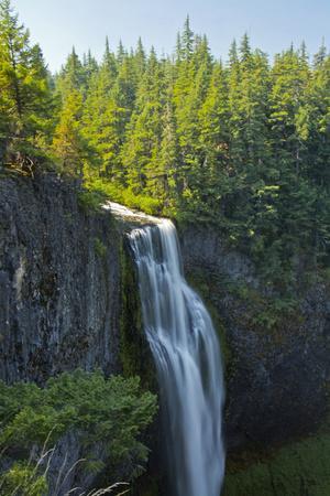 https://imgc.allpostersimages.com/img/posters/salt-creek-falls-willamette-national-forest-oregon-usa_u-L-Q12TB720.jpg?artPerspective=n