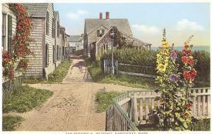 Saltbox Houses, Siasconset, Nantucket, Massachusetts