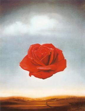 Rose Meditative, c.1958 by Salvador Dalí