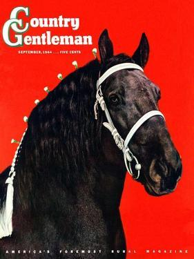 """Prize Draft Horse,"" Country Gentleman Cover, September 1, 1944 by Salvadore Pinto"