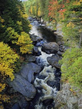 The Pleasant River in Maine by Sam Abell