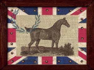 British Equestrian by Sam Appleman