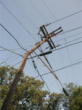 Tangled Wires Stretch in Four Directions from a Telephone Pole by Sam Kittner