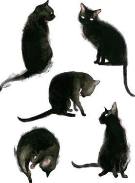 Caturdays by Sam Nagel