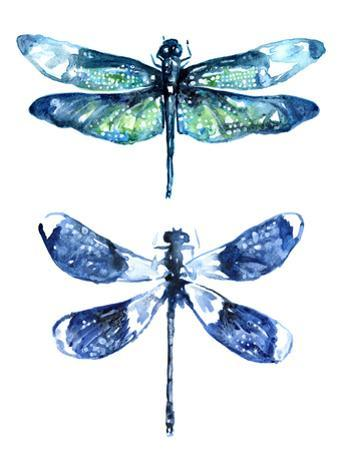 Dragonfly Wings by Sam Nagel