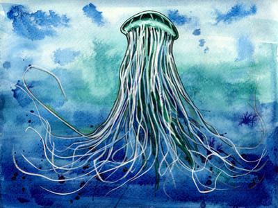 Emperor Jellyfish by Sam Nagel