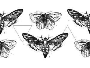 Geometric Moths Repeat Tile by Sam Nagel