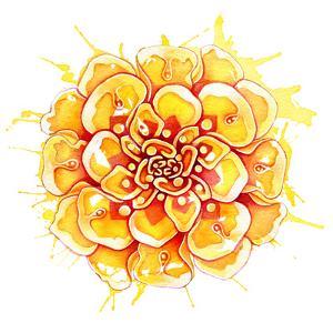 Marigold Mandala by Sam Nagel