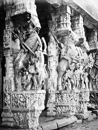 Carved Horse Pillars in Ranganatha Temple, Srirangam, 1869