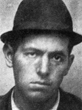 Samuel Browning, American Train Robber
