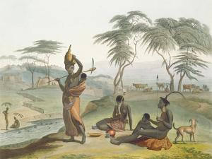 Boosh Wannahs, Plate 8 from 'African Scenery and Animals', Engraved by the Artist, 1804 (Aquatint) by Samuel Daniell