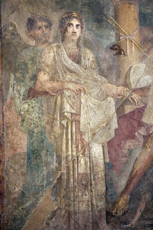 Italy, Naples Museum, from Pompeii, House of the Tragic Poet  (VII, 8, 3), Zeus and Hera Wedding by Samuel Magal