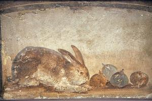 Italy, Naples, Naples Museum, from Herculaneum, House of Stag, Rabbit and Figs by Samuel Magal