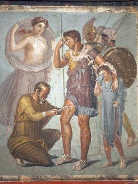 Italy, Naples, Naples Museum, from Pompeii, House of Siricus (VII, 1, 47), Lapyx and Aeneas by Samuel Magal