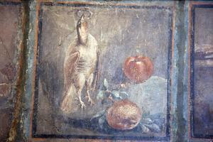 Italy, Naples, Naples National Archeological Museum, Still life with Bird and Pomegranates by Samuel Magal