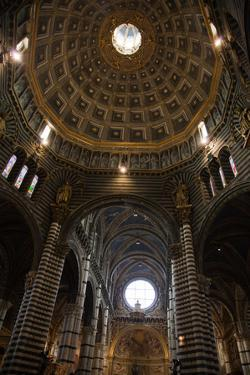 Italy, Siena, Siena Cathedral, Dome Ceiling, Interior by Samuel Magal