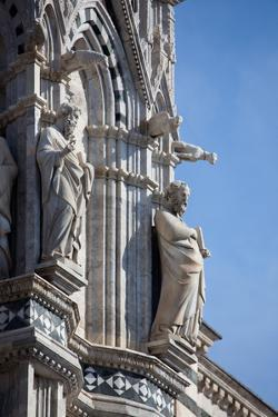 Italy, Siena, Siena Cathedral, Statues and Gargoyles by Samuel Magal