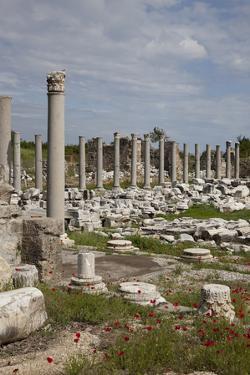 Turkey, Side, Agora, Colonnade Courtyard by Samuel Magal