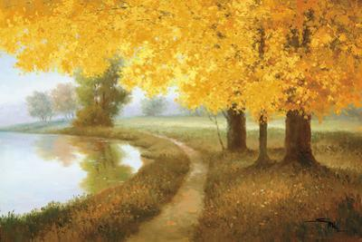 Meadow Lake by Samuel
