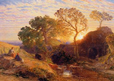 Sunset, C.1861 (W/C, Graphite, B/C and Gum on Card) by Samuel Palmer