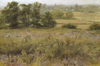 The Furze Field, 19th Century by Samuel Palmer
